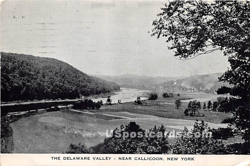 The Delaware Valley - Callicoon, New York NY Postcard