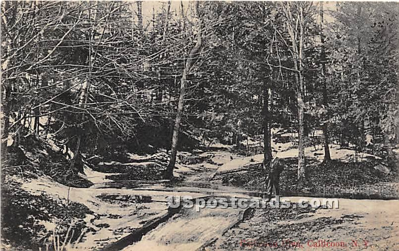 Callicoon Glen - New York NY Postcard