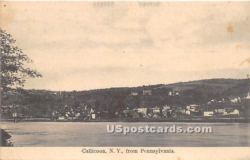 View from Pennsylvania - Callicoon, New York NY Postcard