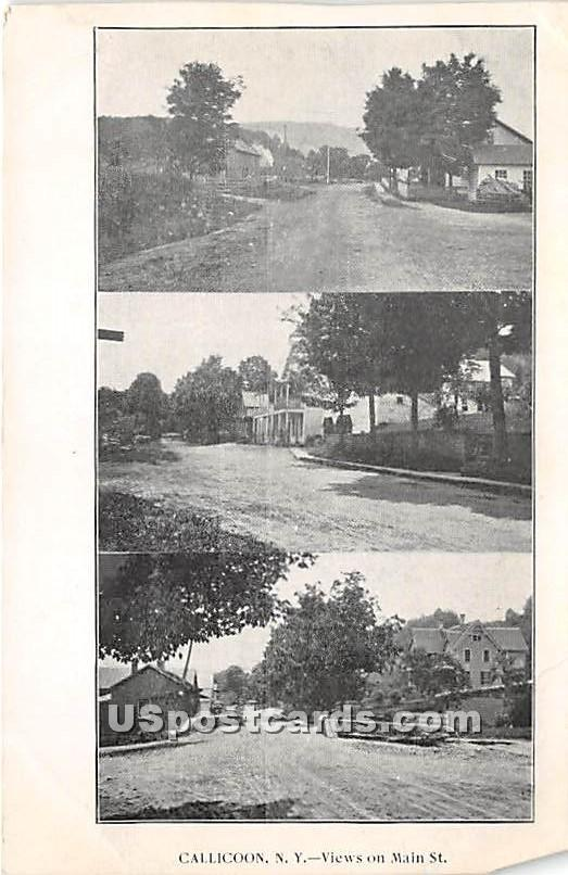 Views on Main Street - Callicoon, New York NY Postcard