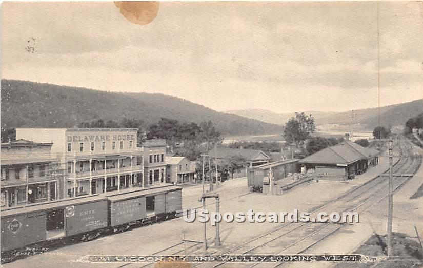 Valley Looking West - Callicoon, New York NY Postcard