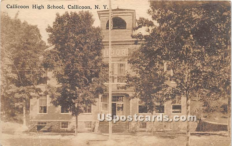 Callicoon High School - New York NY Postcard