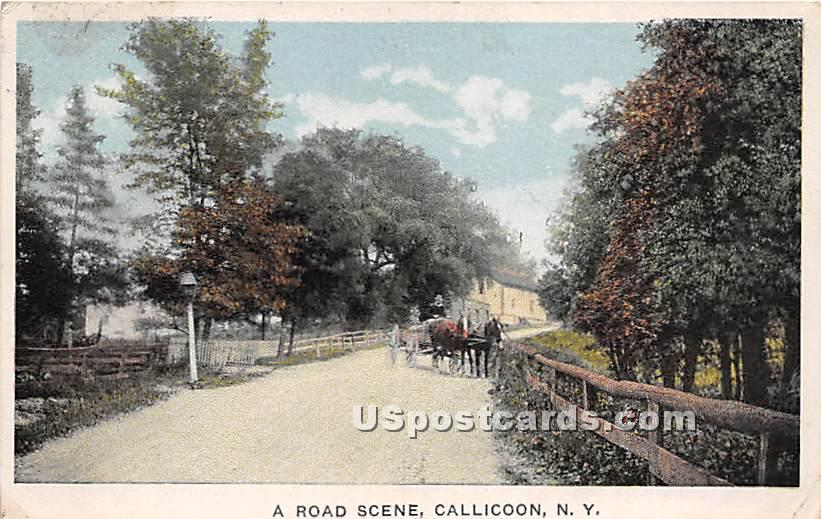 A Road Scene - Callicoon, New York NY Postcard