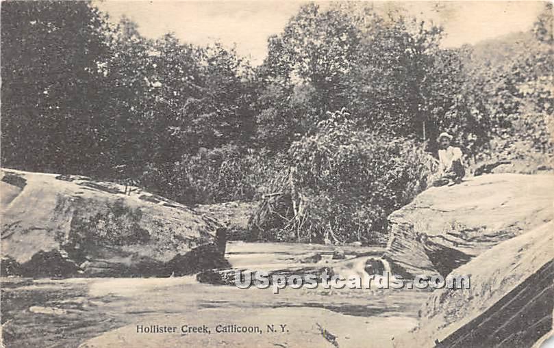 Hollister Creek - Callicoon, New York NY Postcard