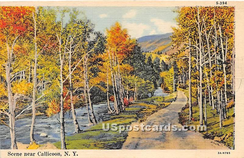 River View - Callicoon, New York NY Postcard