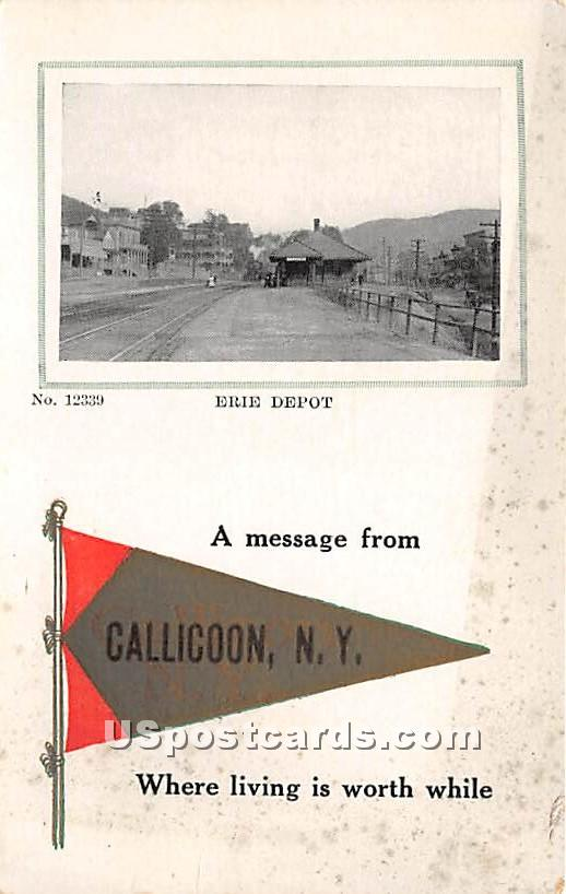 Erie Depot - Callicoon, New York NY Postcard