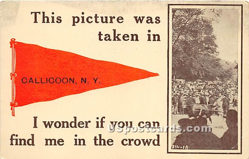 I wonder if you can find me in the crowd - Callicoon, New York NY Postcard