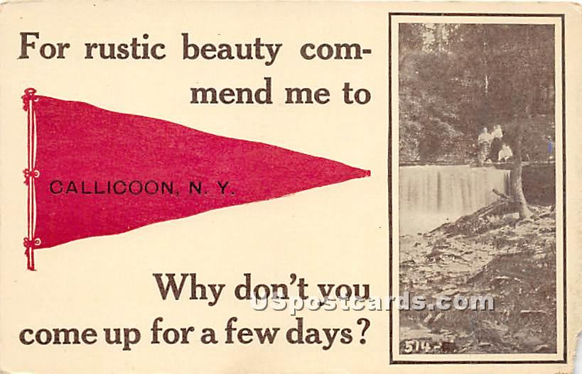 Rustic beauty commend me to - Callicoon, New York NY Postcard