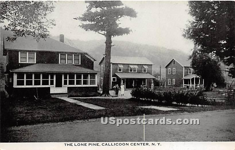The Lone Pine - Callicoon Center, New York NY Postcard