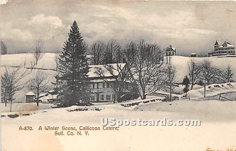 A Winter Scene - Callicoon Center, New York NY Postcard