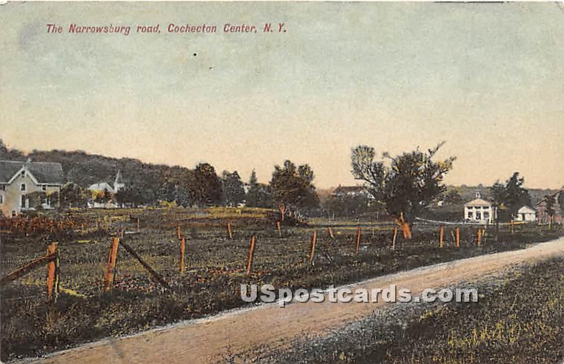 The Narrowsburg Road - Cochecton Center, New York NY Postcard