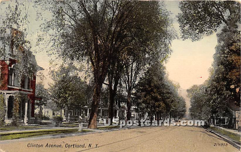 Clinton Avenue - Cortland, New York NY Postcard