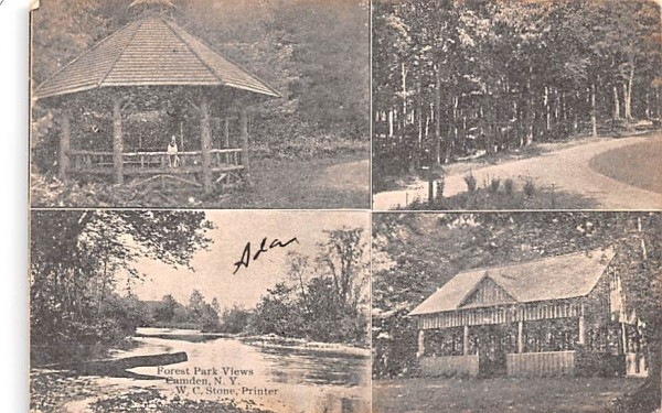 Forest Park Views Canandaigua, New York Postcard