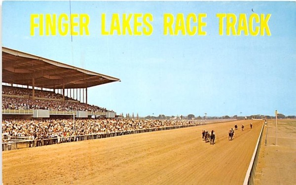 Finger Lakes Race Track Canandaigua, New York Postcard