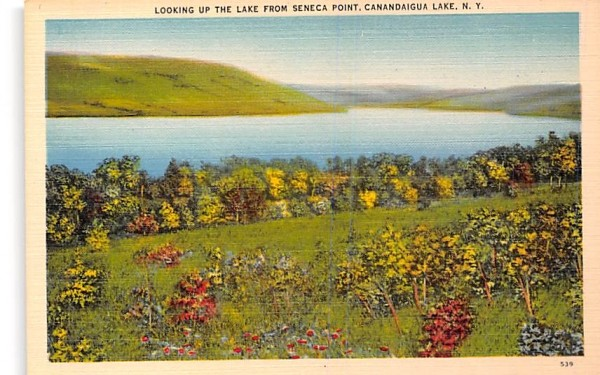 Lake from Seneca Point Canandaigua, New York Postcard