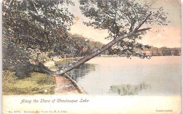 Along the Shore Chautauqua, New York Postcard