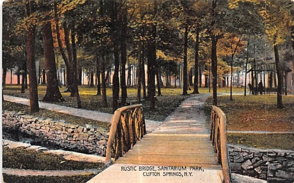 Rustic Bridge Clifton Springs, New York Postcard