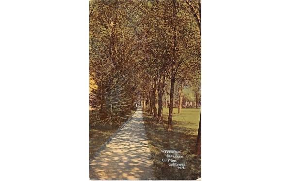 West Walk Clifton Springs, New York Postcard