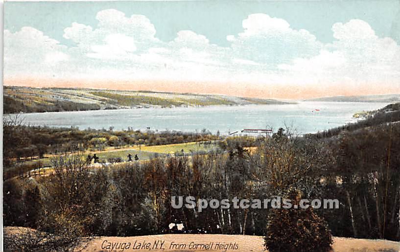 Cornell Heights - Cayuga Lake, New York NY Postcard