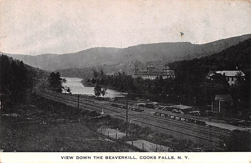 View Down The Beaverkill - Cooks Falls, New York NY Postcard