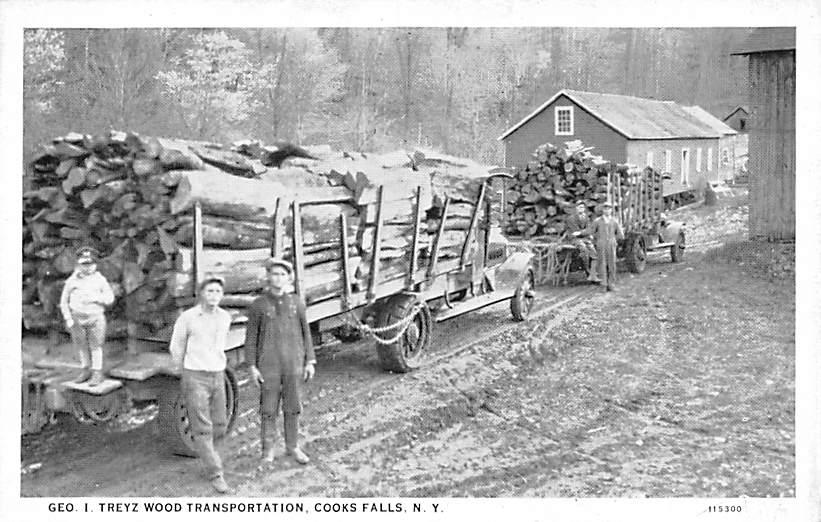 Geo I. Treyz Wood Transportation - Cooks Falls, New York NY Postcard