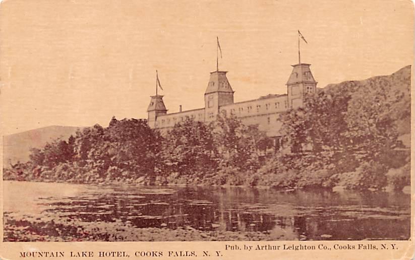 Mountain Lake House - Cooks Falls, New York NY Postcard