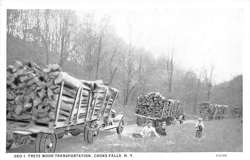 Wood Transportation - Cooks Falls, New York NY Postcard