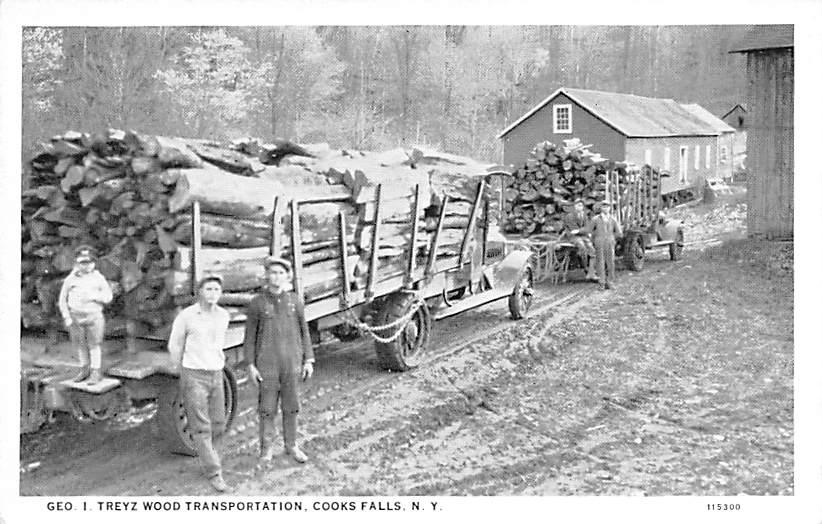 Transportation of Wood Geo I Treyz - Cooks Falls, New York NY Postcard