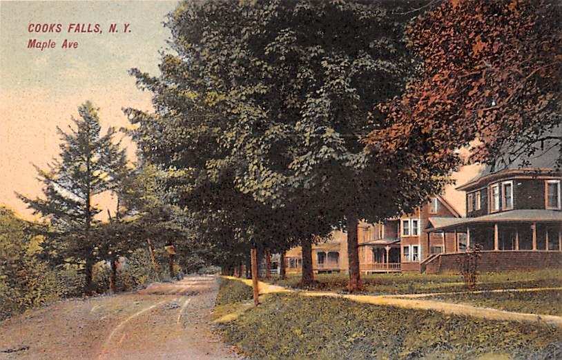 Maple Ave - Cooks Falls, New York NY Postcard