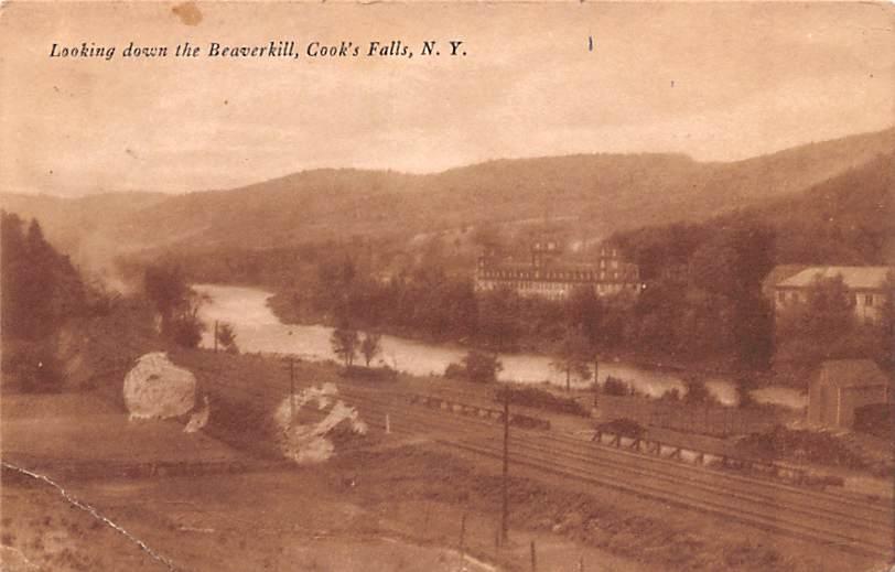 Looking Down the Beaverkill - Cooks Falls, New York NY Postcard