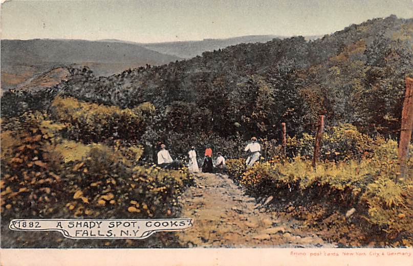 A Shady Spot - Cooks Falls, New York NY Postcard