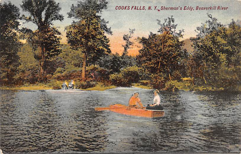 Sherman Eddy, Beaverkill River - Cooks Falls, New York NY Postcard