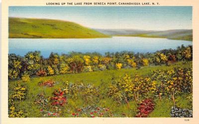 Lake from Seneca Point Canandaigua, New York Postcard