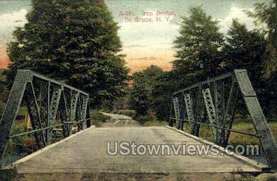 Iron Bridge - De Bruce, New York NY Postcard