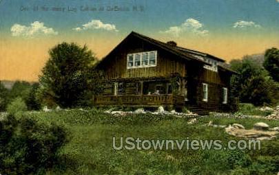Log Cabin - De Bruce, New York NY Postcard