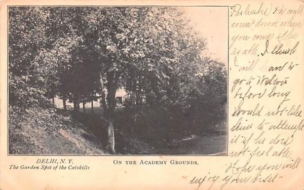 Acadeny Grounds Delhi, New York Postcard