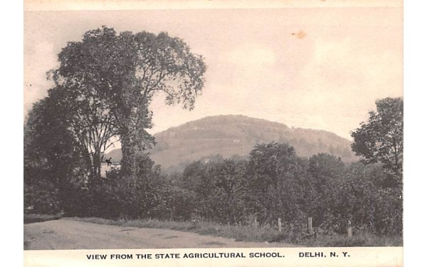 View From State Agricultural School Delhi, New York Postcard
