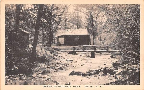 Scene in Mitchell Park Delhi, New York Postcard