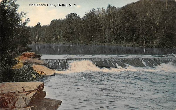 Sheldon's Dam Delhi, New York Postcard