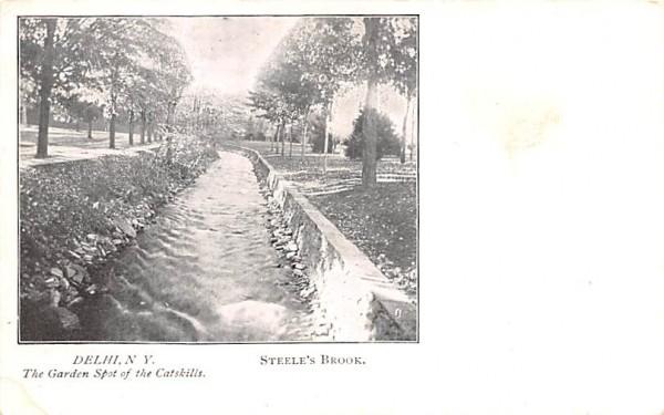 Steele's Brook Delhi, New York Postcard