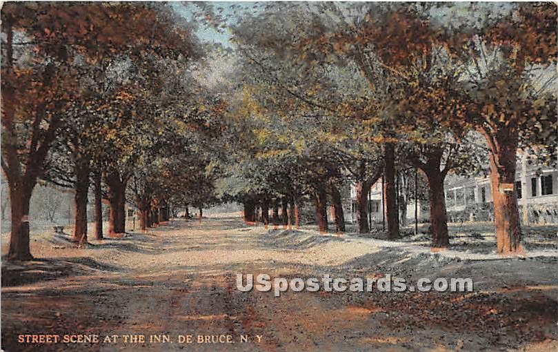 Street Scene at the Inn - De Bruce, New York NY Postcard