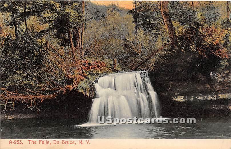 The Falls - De Bruce, New York NY Postcard