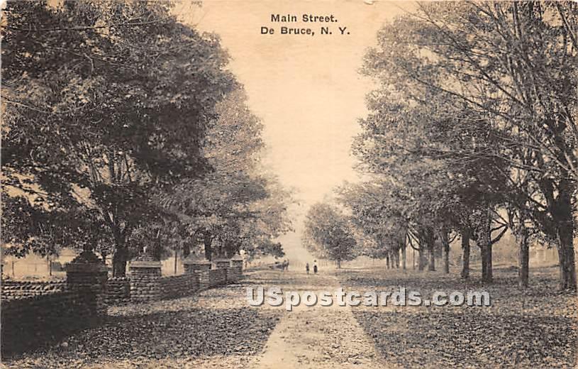 Main Street - De Bruce, New York NY Postcard
