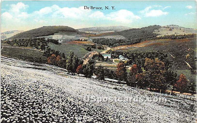 Birds Eye View - De Bruce, New York NY Postcard