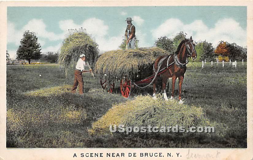 Hay Scene - De Bruce, New York NY Postcard