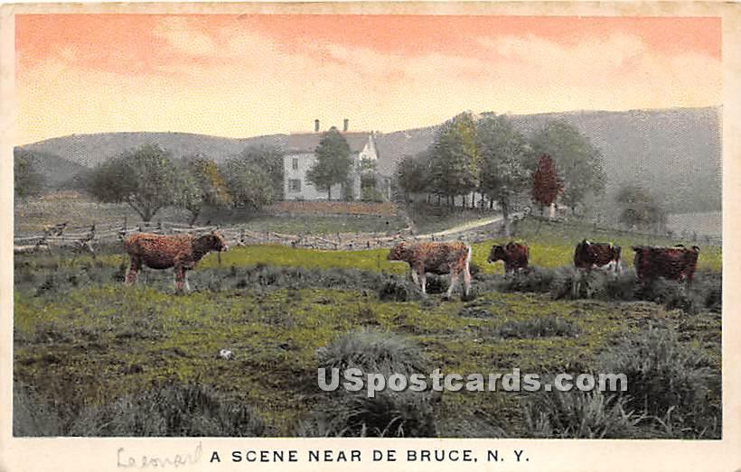Farm Scene - De Bruce, New York NY Postcard