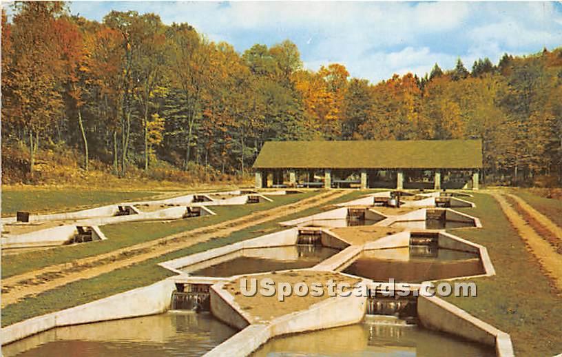 Catskill Mountain Vacationlands - De Bruce, New York NY Postcard