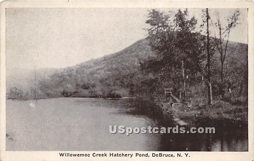Willowemoc Creek Hatchery Pond - De Bruce, New York NY Postcard