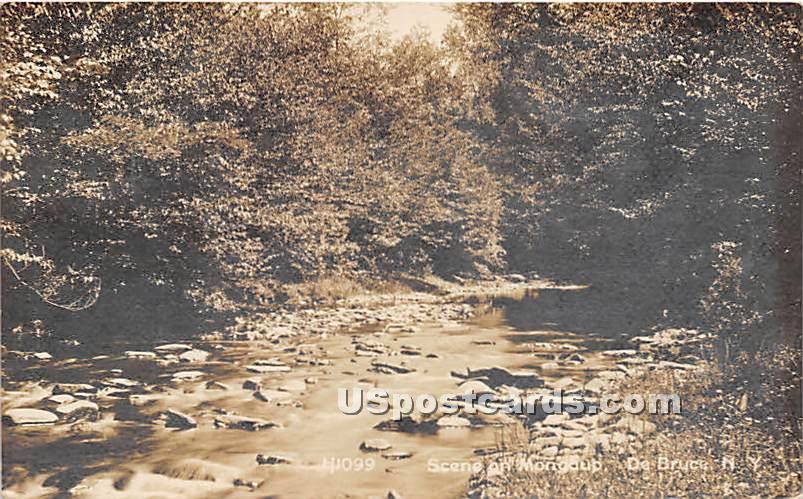 Scene on Mongoup - De Bruce, New York NY Postcard