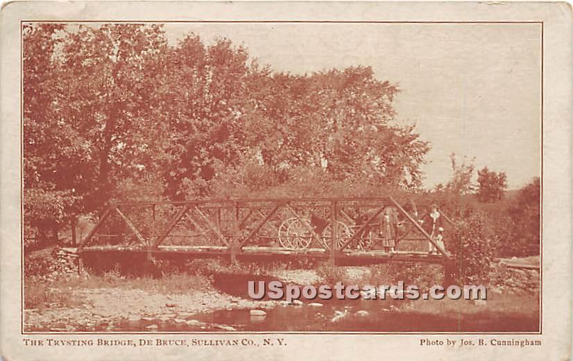 Trysting Bridge - De Bruce, New York NY Postcard